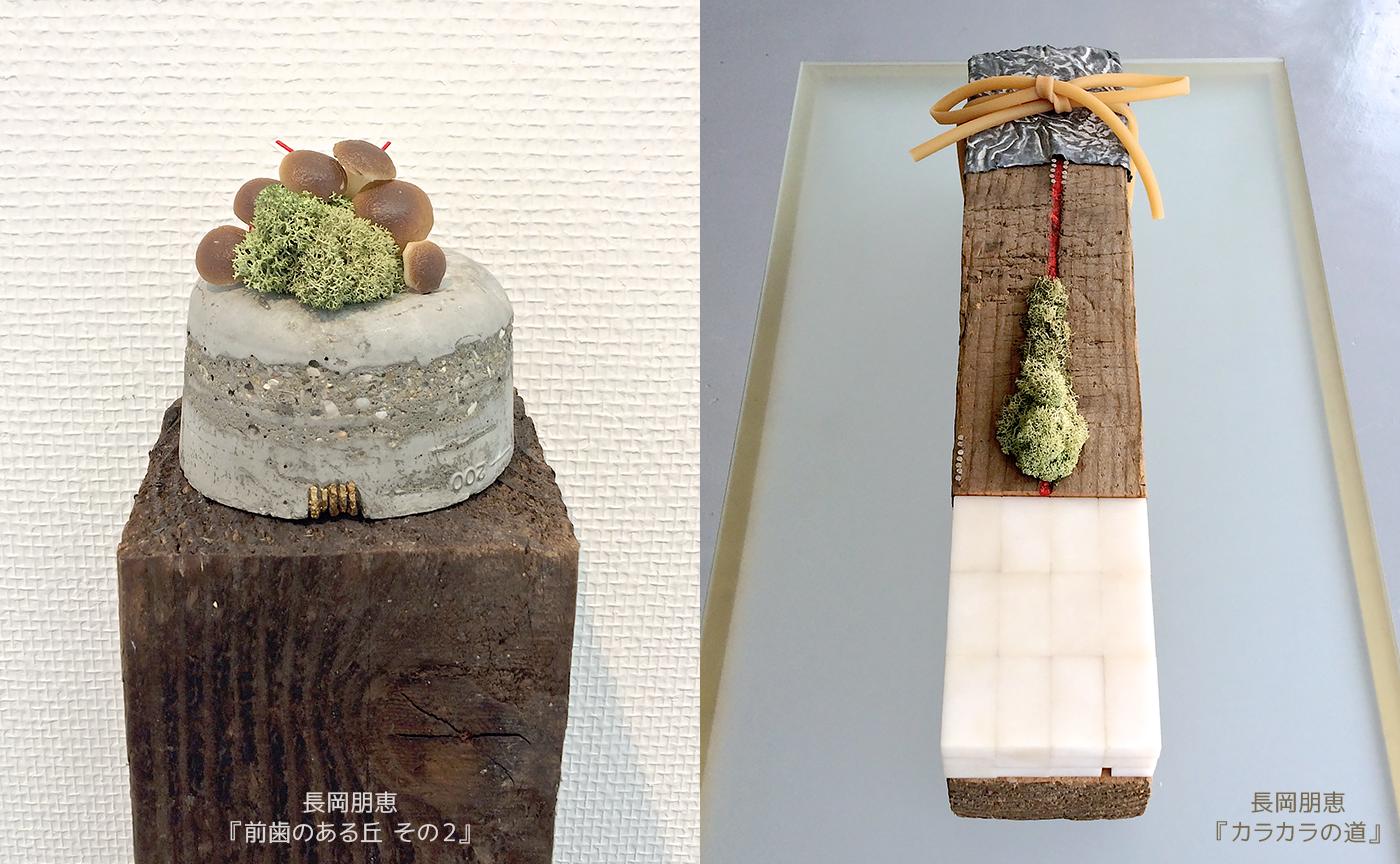 長岡朋恵『前歯のある丘 その2』『カラカラの道』