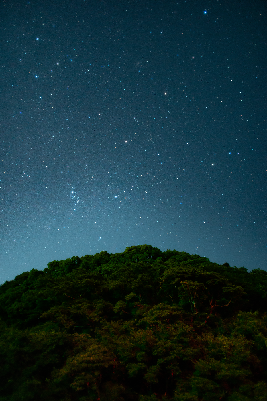 Nikon Df:NIKKOR-N・C Auto 24mm F2.8 + Kenko Starry Night & MC Pro Softon(A):ISO1600 f2.8 30s